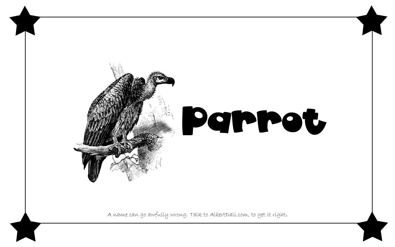 Albert Dali - Parrot