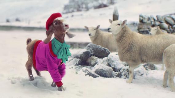 TK Maxx Xmas 2020 - The Lil' Goat